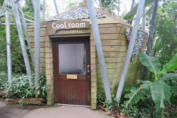 Cool Room im Eden Project, Cornwall