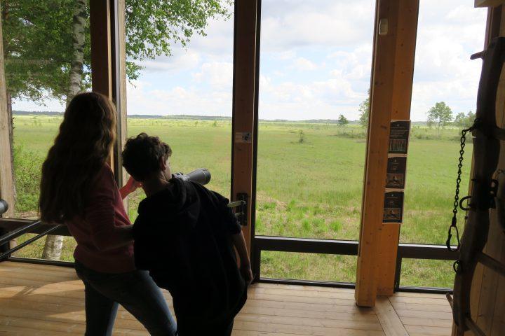 Naturum Kindermuseum im Store Mosse Nationalpark