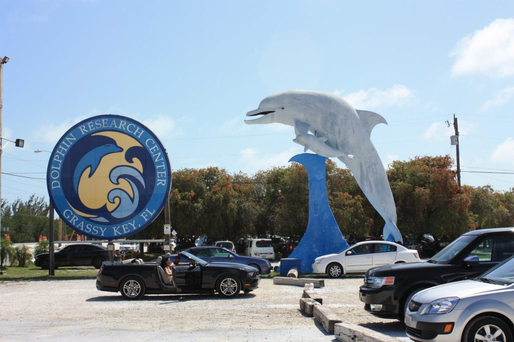 Parkplatz Dolphin Research Center, Grassy Key, Florida