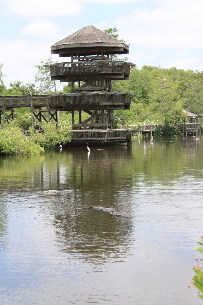 Der Aussichtsturm bietet einen tollen Blick über den See und das angrenzende Sumpfgebiet in Gatorland, Orlando, Florida