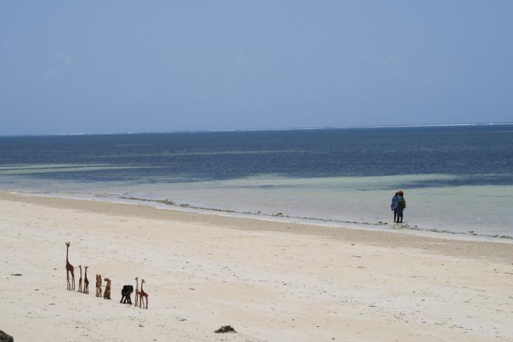 Severin Sea Lodge, Strand, Kenia mit Kindern