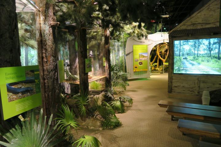 Nature Center, Conservancy of Southwest Florida, Naples