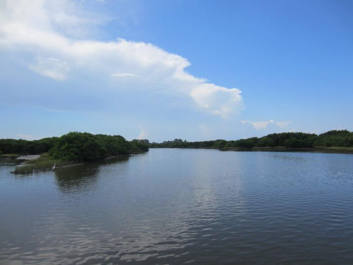 View at Old Fenimore Mill, Cedar Key, Florida