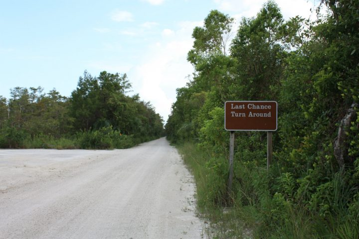Loop Road, Big Cypress National Preserve, Everglades, Florida