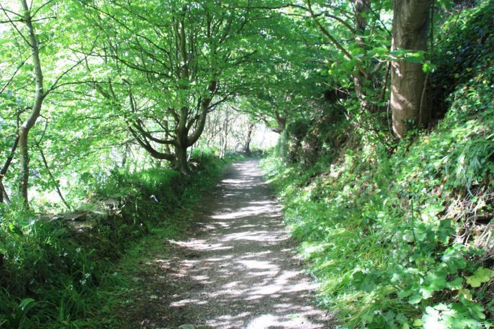 Weg nach Portreath von Gwel an Mor, Portreath, Cornwall