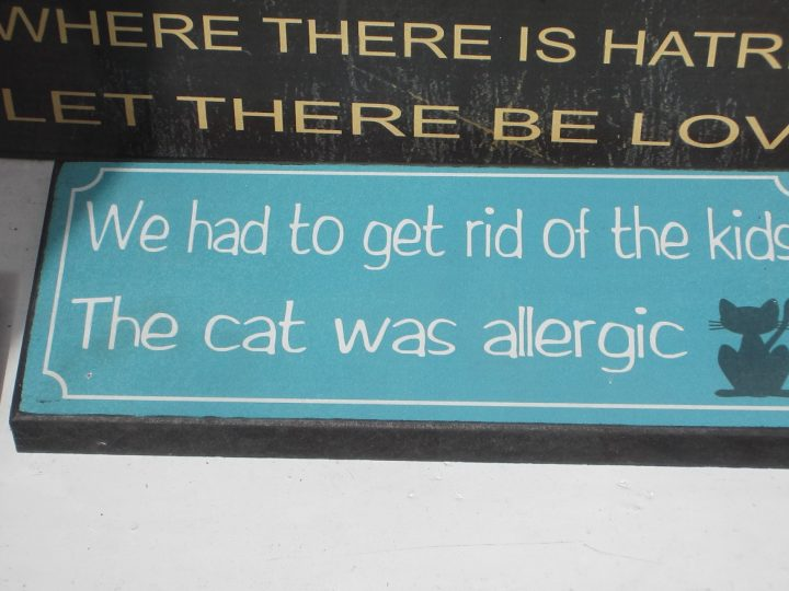 We had to get rid of the kids. The cat was allergic.
