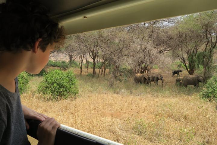 Kenia mit Kindern - auf Safari