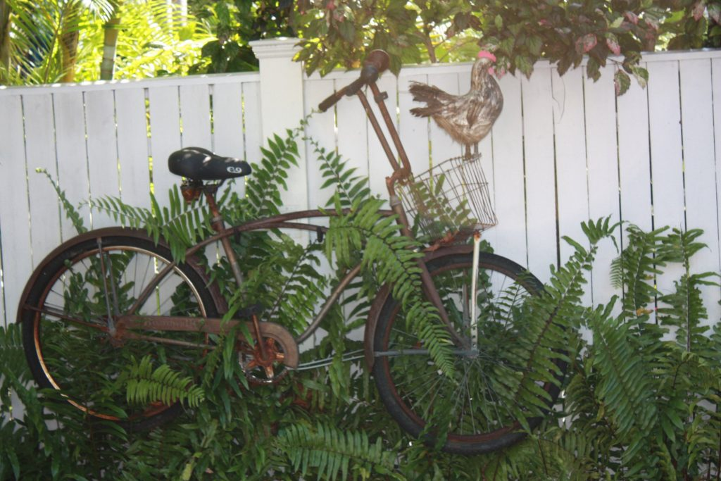 Altes Fahrrad in Key West, Florida