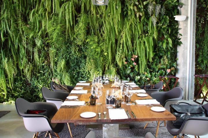 Hier trifft Dschungel auf modernes Design: Sternerestaurant José Carlos García am Hafen