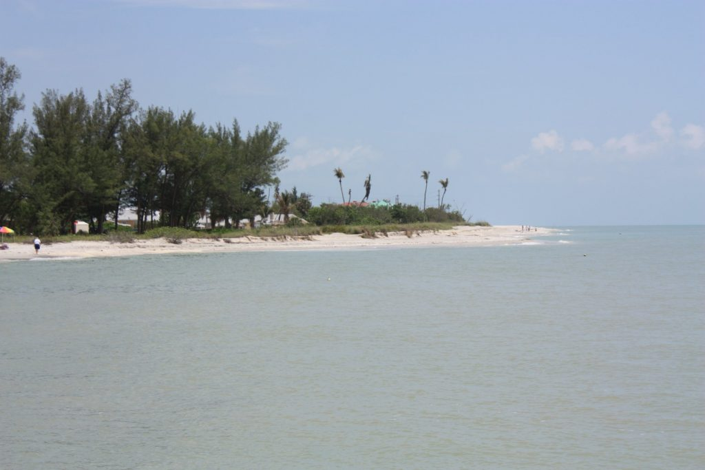 Best place to find shells on Sanibel Island